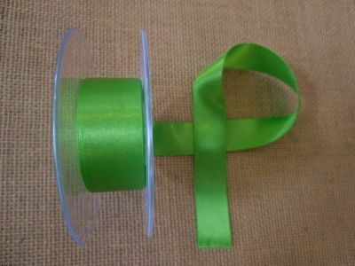 25mm Satin Ribbon Meadow