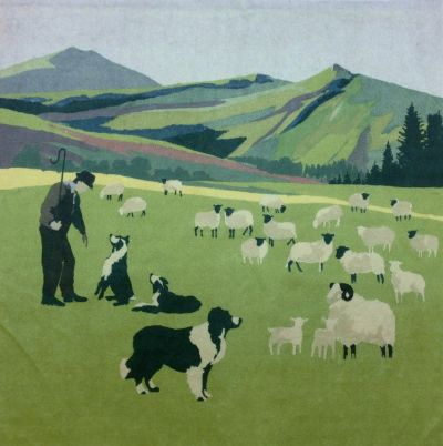 Cymru Hill Farmer Velvet Cushion Panel
