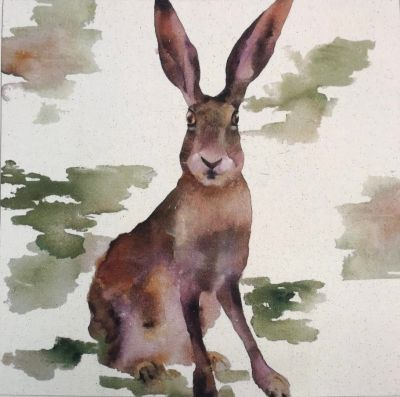 Tex Ex Organic Cotton Farmyard Faces Hare Watercolour