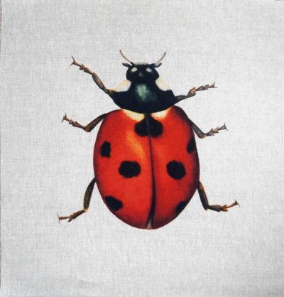 Ladybird Cushion Panel