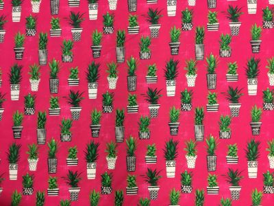 Potted Cacti Cerise A191
