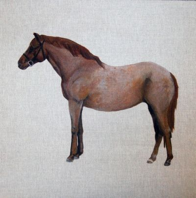 Strawberry Roan Horse Cushion Panel