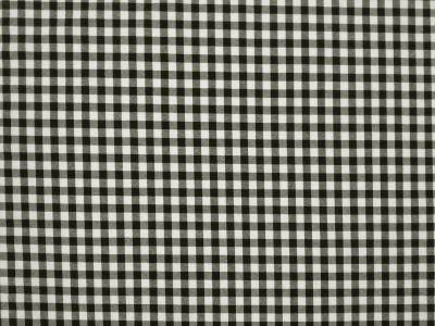 Country Gingham Black White Tex Ex 1117