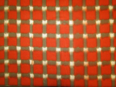 Arizona Blanket Tan Red Tex Ex 1725
