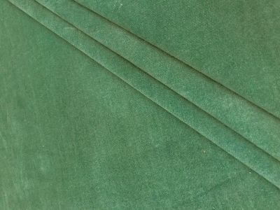 Stretch Velvet Green Tex Ex 1809