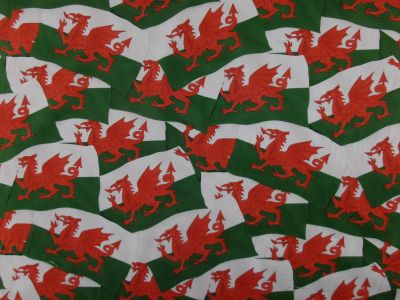 Welsh Flag D82
