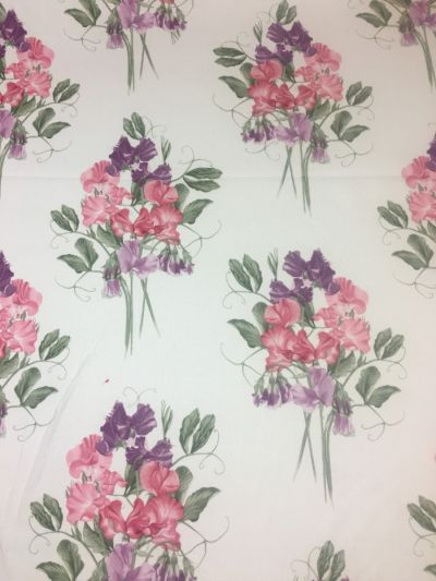 Sweet Pea Violet Rose Purple Tex Ex 2116