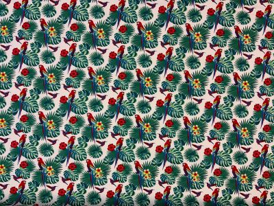 Tropical parrot cotton poplin C559