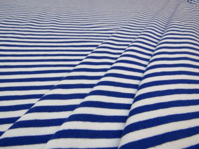 Organic Cotton Jersey Stripe Royal B126