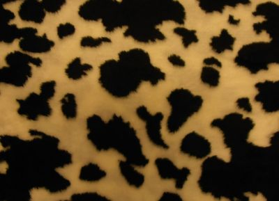 Black Cow Short Hair Fur