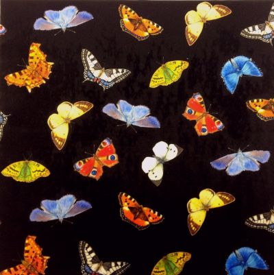 British Butterflies Black Velvet Cushion Panel