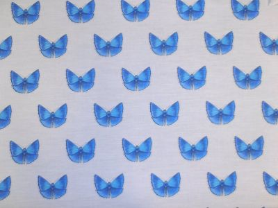 Tex Ex Original British Butterflies Blue Adonis