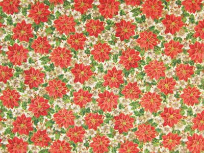 Christmas Poinsetta Red Green C212