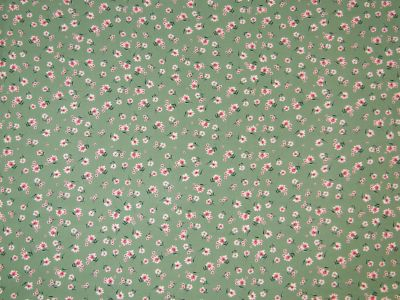 Meadow Chiffon Green C444