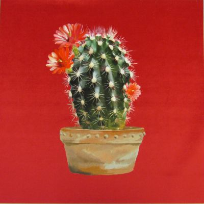 Velvet Cushion Panel Cactus Strawberry