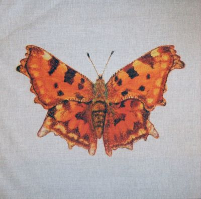 Comma British Butterflies Cushion Panel