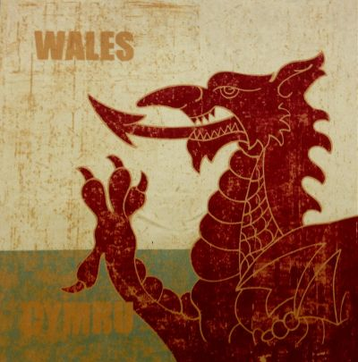 Welsh Dragon Velvet Chenille Cushion Panel