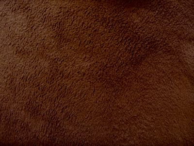 Brown Polar Fleece Fabric ES012