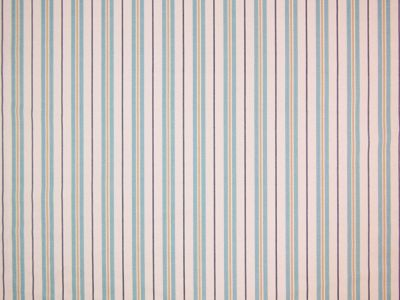 Birdsong Stripe Blue/ Gold E114