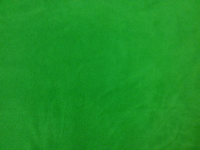 Emerald Polar Fleece Fabric ES012