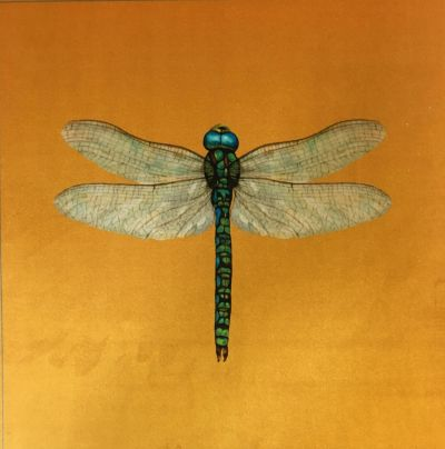 Velvet Dragonfly Cushion Panel Gold