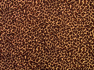 Leopard Needlecord Brown I160