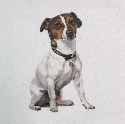 Organic Cotton Pets Jack Russell Panel
