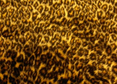 Leopard Print Short Hair Fur