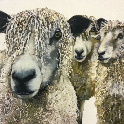 Organic Cotton Farmyard Faces Longwool Flock Natural Panel