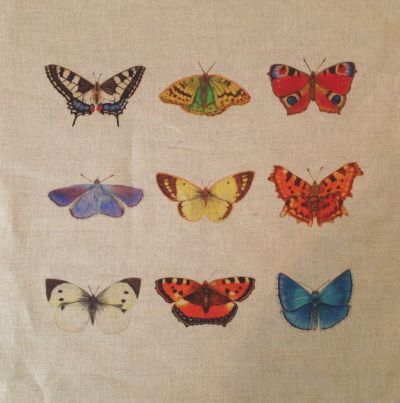 Multi British Butterflies Cushion Panel
