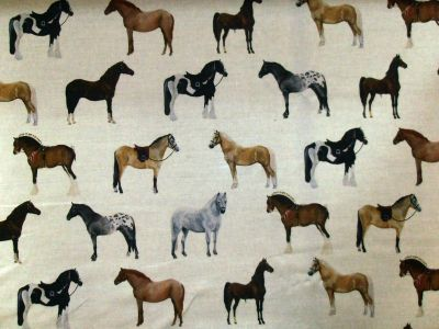 Tex Ex Originals Horses Multi Random