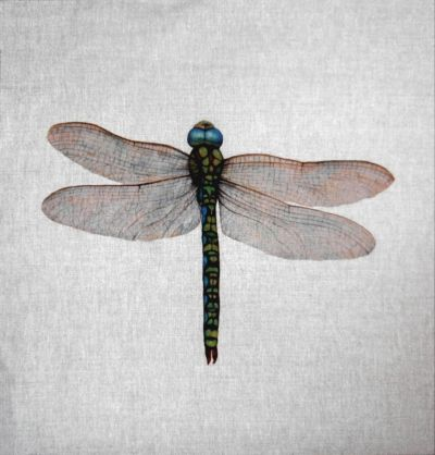 Dragonfly Cushion Panel