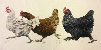 Organic Cotton Farmyard Faces Chicken Run Oblong Natural Panel