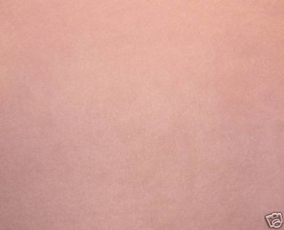 Pale Pink Polar Fleece Fabric