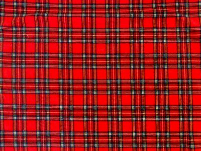 Red Tartan Fleece Red Multi C503