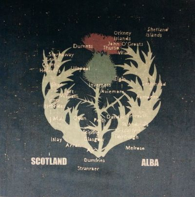Tex Ex Scottish Thistle Map Velvet Cushion Panel