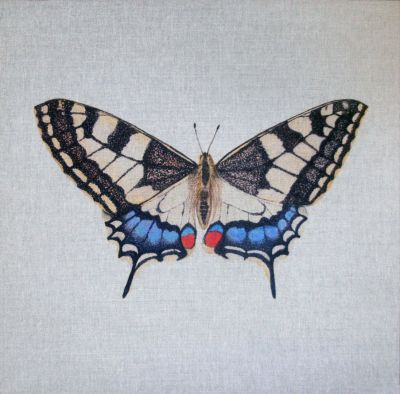 Swallowtail British Butterflies Cushion Panel