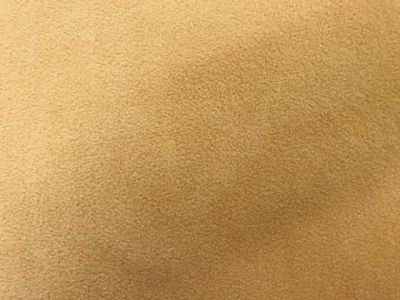 Tan Polar Fleece Fabric