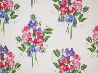 Sweet Pea Multi Tex Ex 1950