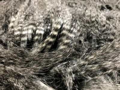 Luxury Long Hair Raccoon Fur Black White Tex Ex 2140