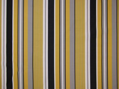Candy Stripe Lemon Tex Ex 2161