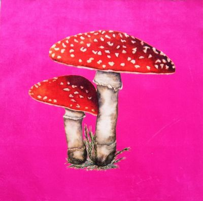 Velvet Cushion Panel Flora and Fauna Toadstool Sherbet