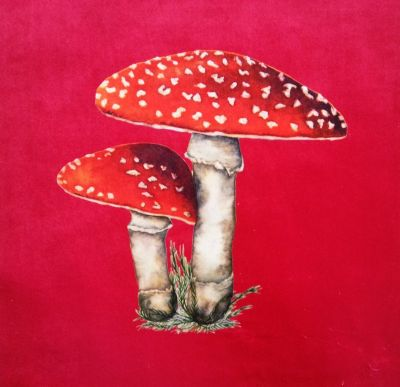 Velvet Cushion Panel Flora and Fauna Toadstool Strawberry