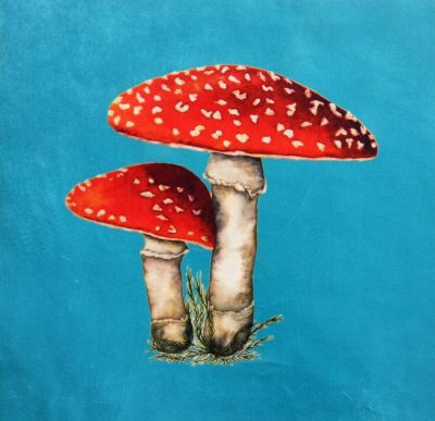Velvet Cushion Panel Flora and Fauna Toadstool Turquoise