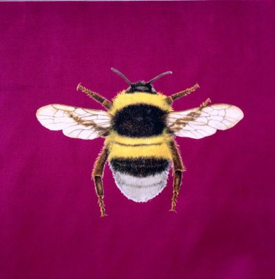 Velvet Bumblebee Cushion Panel Berry