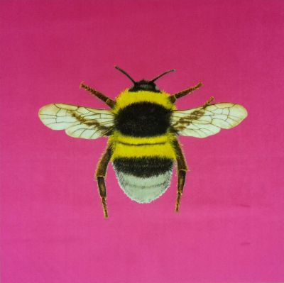 New Chenille Velvet Bumblebee Cushion Panel Sherbet
