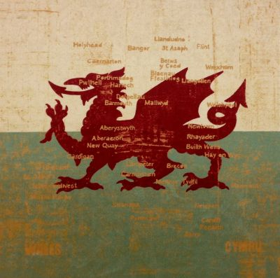 New Cymru Antique Chenille Velvet Dragon Map Cushion Panel
