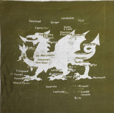 Cymru Dragon Map Green Cushion Panel