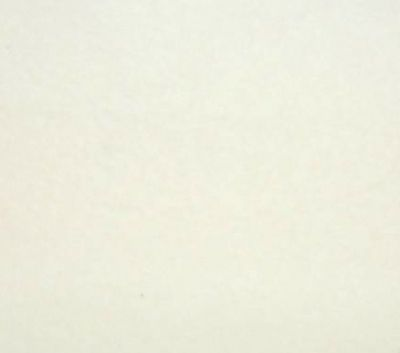 White Polar Fleece Fabric