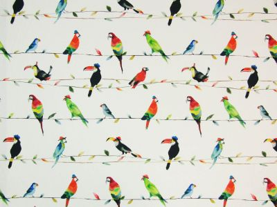 Prestigious Toucan Talk Paintbox